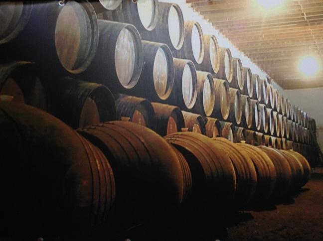 Foto uit het Museo del Vino